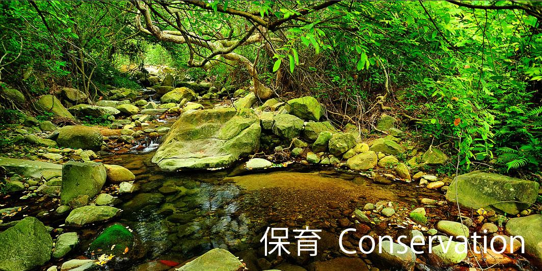 20090608_133442_Lantau_TaiHo_02_075